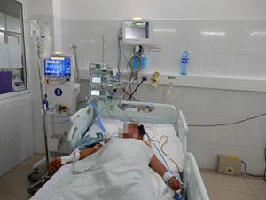 Đà Nẵng: 3 người trong một gia đình ngộ độc nấm rừng đã tử vong
