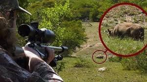 Bố dùng súng bắn chết con trai vì tưởng là 'lợn rừng'