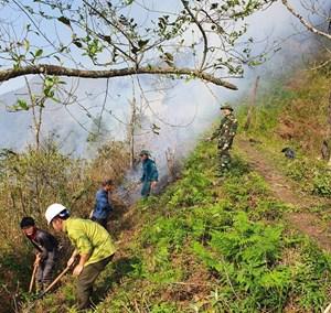Lào Cai: Khống chế nhanh nhiều điểm cháy giáp ranh rừng