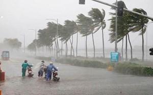 Vẫn còn khoảng 3-4 cơn bão