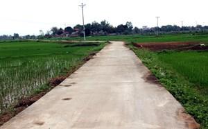 Nâng cao chất lượng các tiêu chí xây dựng nông thôn mới