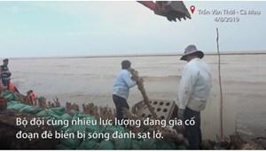 [VIDEO] Nước biển dâng, sóng lớn uy hiếp 50 km đê biển ở Cà Mau