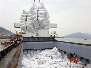 Thủ tướng chỉ đạo thanh tra việc xuất khẩu gạo