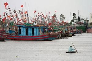 Cần xây dựng nghề cá bền vững, có trách nhiệm