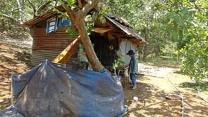 Tìm thấy hai cháu bé sinh đôi mất tích ở tỉnh Bình Phước