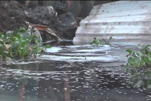 Doanh nghiệp xả thải bức tử sông Cầu Lường