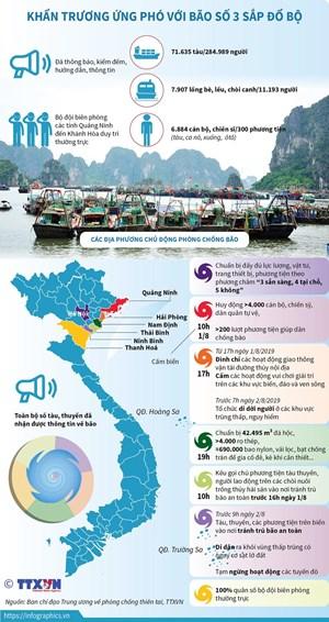 [Infographics] Khẩn trương ứng phó với bão số 3 sắp đổ bộ