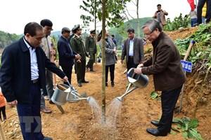 Thường trực Ban Bí thư dự Lễ phát động Tết trồng cây tại Tuyên Quang
