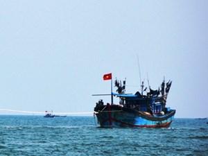 Quảng Nam: Một tàu câu mực bị hỏng máy trên biển vùng biển Trường Sa