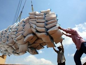 Lập đoàn kiểm tra liên ngành nắm tình hình về lượng gạo tại các cảng
