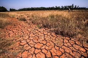 Ngày Trái Đất năm 2020: Lan tỏa ý tưởng xanh, hành động vì khí hậu