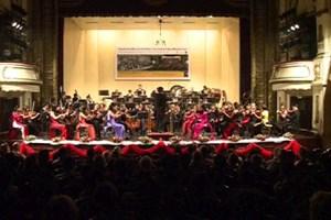Hòa nhạc hữu nghị Việt Nam – Áo