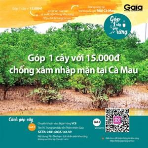 Cà Mau xác minh thông tin góp tiền trồng rừng