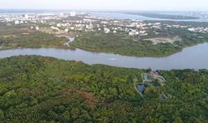 Kiểm tra dấu hiệu vi phạm pháp luật  trong chuyển nhượng hơn 32 ha đất tại huyện Nhà Bè