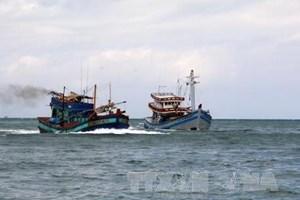 Lai dắt tàu cá bị nạn ở vùng biểnVũng Tàu về bờ