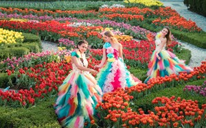 Thanh xuân có hạn, còn chờ chi mà không đến 'cánh đồng hoa tulip' lớn nhất Việt Nam?