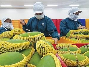 Hàng Việt vẫn khó vào hệ thống phân phối ngoại