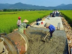 Lương Sơn (Ninh Thuận): Duy trì và nâng cao chất lượng các tiêu chí nông thôn mới