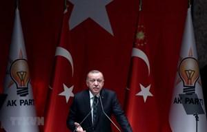 Thổ Nhĩ Kỳ có thể 'không tuyên bố ngừng bắn' tại Bắc Syria