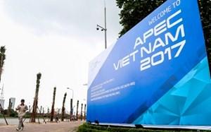 Vai trò APEC, vị thế Việt Nam