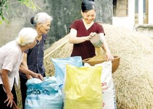 Vĩnh Long: Vai trò người cao tuổi trong phát triển kinh tế -xã hội