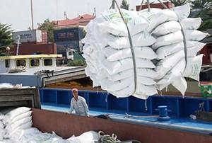 Thanh tra chính phủ làm rõ 'có hay không dấu hiệu trục lợi' trong xuất khẩu gạo