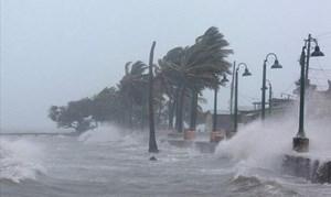 Sẽ xuất hiện 10 - 12 cơn bão