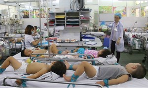 Gia tăng bệnh nhân mắc sốt xuất huyết