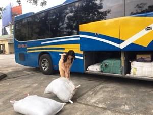 Bắt xe ô tô chở 250 kg bì lợn thối đi tiêu thụ