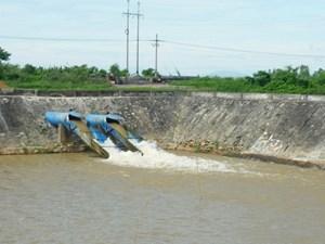 Đà Nẵng: Nước sinh hoạt nhiễm mặn nghiêm trọng