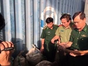 Đà Nẵng: Truy nã các đối tượngnhập lậu 10 tấn ngà voi
