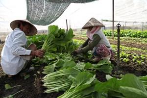 Huy động nội lực để giảm nghèo bền vững - Bài 2: Kỳ vọng giảm nghèo bền vững