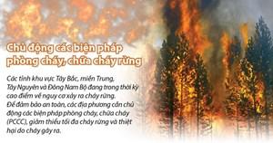 [Infographics] Chủ động các biện pháp phòng cháy, chữa cháy rừng