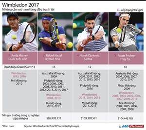 [Infographics] 'Nóng' cuộc chiến tranh ngôi vương tại Wimbledon