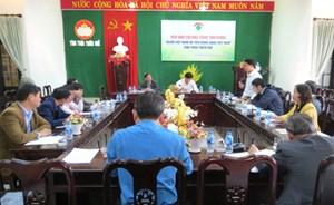 Kết nối, hỗ trợ tiêu thụ sản phẩm hàng Việt tại Thừa Thiên - Huế