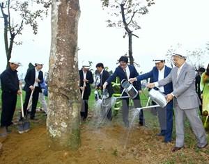 Năm 2017,  Hà Nội phấn đấu trồng hơn 430.000 cây các loại