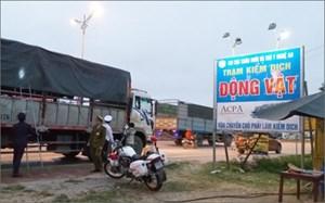Phòng chống dịch tả lợn châu Phi: Chốt chặt các trạm kiểm dịch động vật