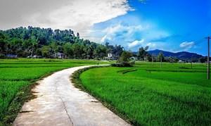 Phú Ninh (Quảng Nam): Khẳng định vai trò của Mặt trận