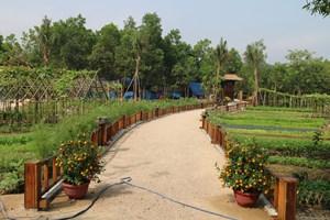 Quảng Nam: Cưỡng chế khu nghỉ dưỡng không phép tại khu vực rừng phòng hộ