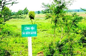 Xử lý sai phạm tại Dự án Công viên Sài Gòn SAFARI: Không thu hồi tiền đã bồi thường cho dân