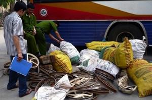 Tây Ninh:Xử lý các trường hợp nhập lậu phế liệu trên tuyến biên giới