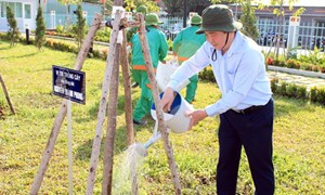 Tết trồng cây tại  TP Hồ Chí Minh