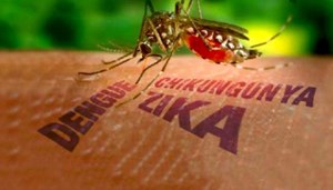 Thêm một người ở TP Hồ Chí Minh nhiễm virus Zika