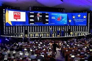 Thủ tướng Anh thất vọng trước kết quả bầu cử Nghị viện châu Âu