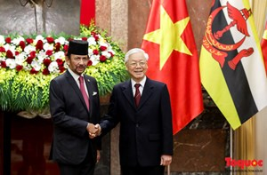Tổng Bí thư, Chủ tịch nước hội đàm với Quốc vương Brunei Darussalam