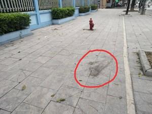 Truy tìm hung thủ nổ súng bắn thương vong 2 người giữa đường phố Thanh Hóa
