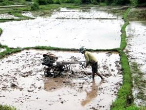 Xóa bỏ hạn điền cùng cơ chế cho nông dân