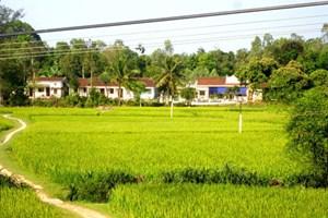 Chương trình mục tiêu quốc gia xây dựng nông thôn mới có 38 xã đạt 19 tiêu chí