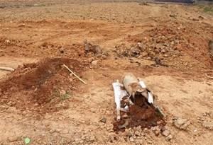 Thừa Thiên-Huế: Khẩn trương xử lý quả bom ở gần cầu Thuận An