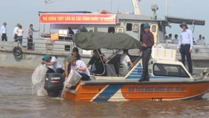 Thái Bình: Thả 500.000 con cá, tôm giống tái tạo nguồn lợi thủy sản